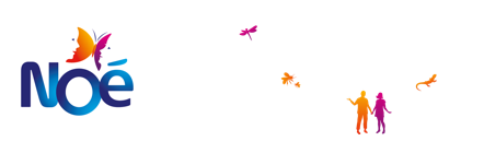 Logo - Noe