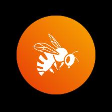Image icone - abeille